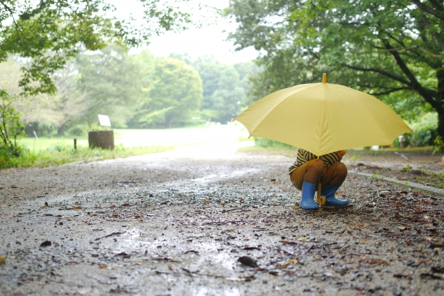 雨の日や梅雨時期に読み聞かせたい絵本